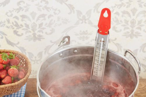 A Quick Guide to Popular Jam Thermometers