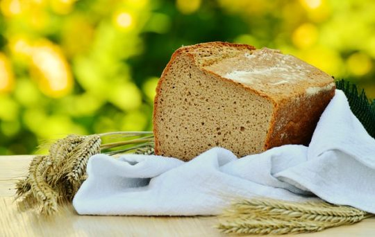 How to Make Bread in a Bread Maker for Perfect Results Every Time