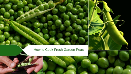 How to Cook Fresh Garden Peas on the Hob, by Steaming or Microwaving