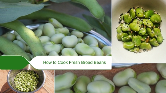 How to Cook Fresh Broad Beans by Steaming or Boiling