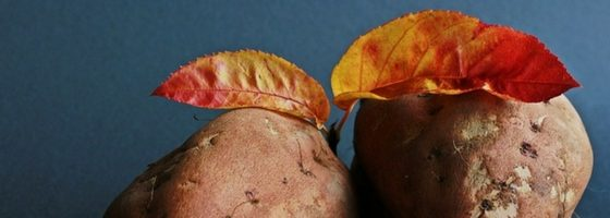How to Cook Fresh Sweet Potatoes Easily