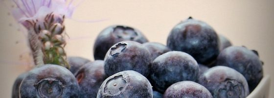 How to Make Blueberry Jam Without Sugar