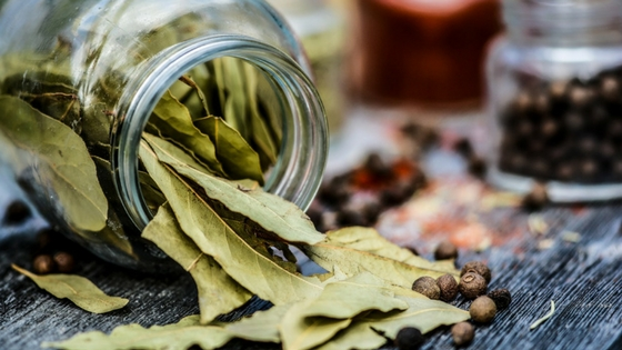 How to Dry Bay Leaves in Your Convection/ Halogen Oven